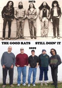 rats still doing it